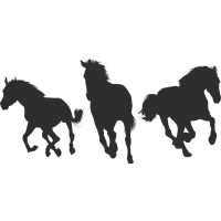 Stickers chevaux 3